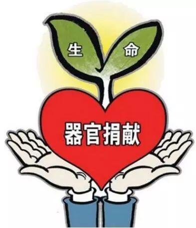 传递爱心 人间温馨!一家三人志愿捐献遗体角膜