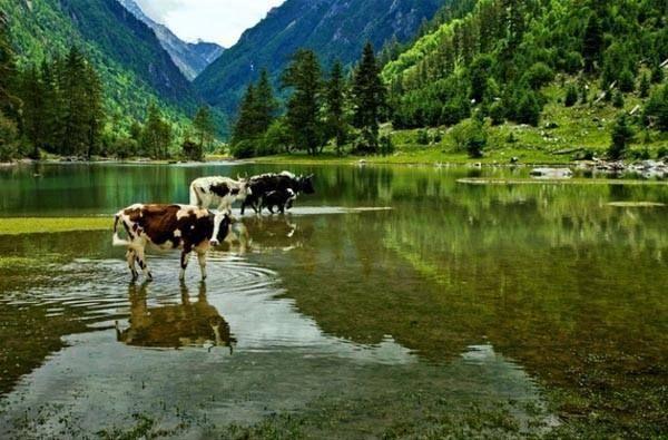 阿坝藏族羌族自治州松潘县牟尼乡