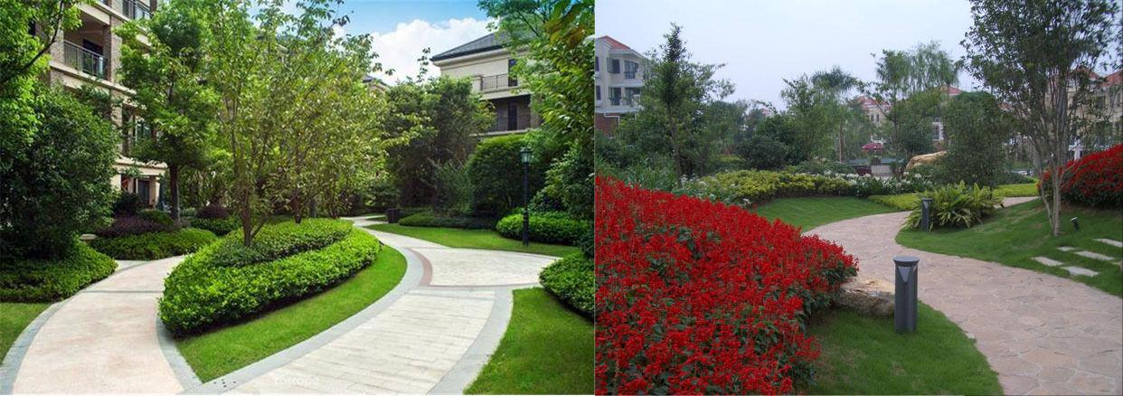 居住区景观设计电脑v电脑说明做平面设计的笔记本植物图片