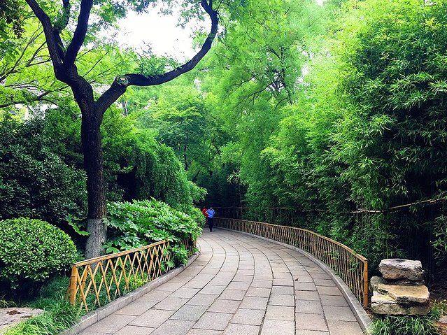神堂峪自然风景区旅行