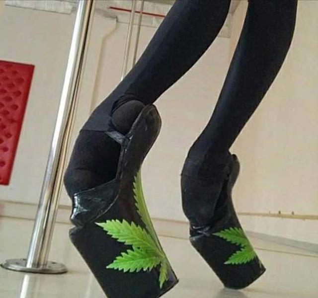 改变令人的怪大小:瞠目图纸趾,把金鱼缸穿在脚cad如何仿效骆驼鞋子图片