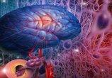 六个症状一出现,预示不是脑血栓,就是脑出血,及时就诊能捡回命