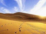 世界上的一大奇观:一望无际的彩色沙漠