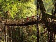 世界上最神奇的桥梁,没用一点钢筋水泥,走了500多年越走越安全
