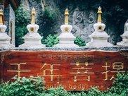 """中国一棵千年菩提树,竟然长出""""佛手"""",五指分明被当地人朝拜"""