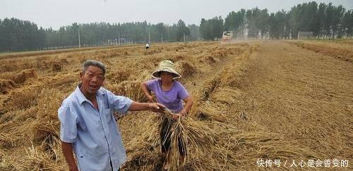 """明年,农民有几个""""苦头""""要吃,几乎每个农民都要面临!"""