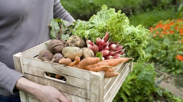 [做农业]搞农业,最重要的是先活下去