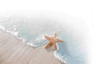 临海的江苏何时能有海岛游?