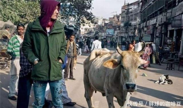 印度人疑惑:我们的街头美食那么好吃,为什么中国游客不喜欢?