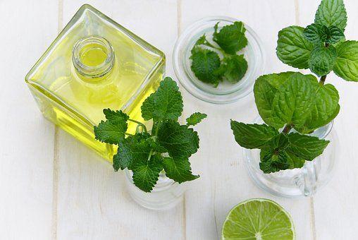 「三花保健茶」中医专家每天三杯它,活血化瘀、降脂,便宜好用!
