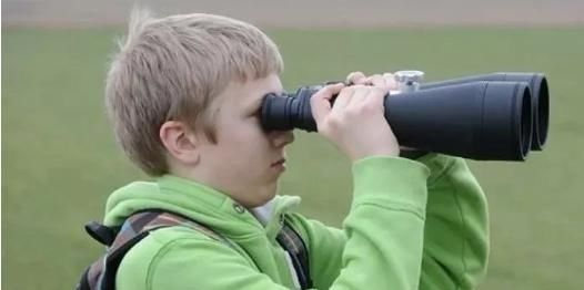 『方法』观察能力强的孩子,学习生活会更出色,这几个方法可以试试