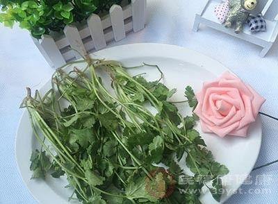 『香菜』香菜的功效 多吃这种蔬菜能够健脾开胃