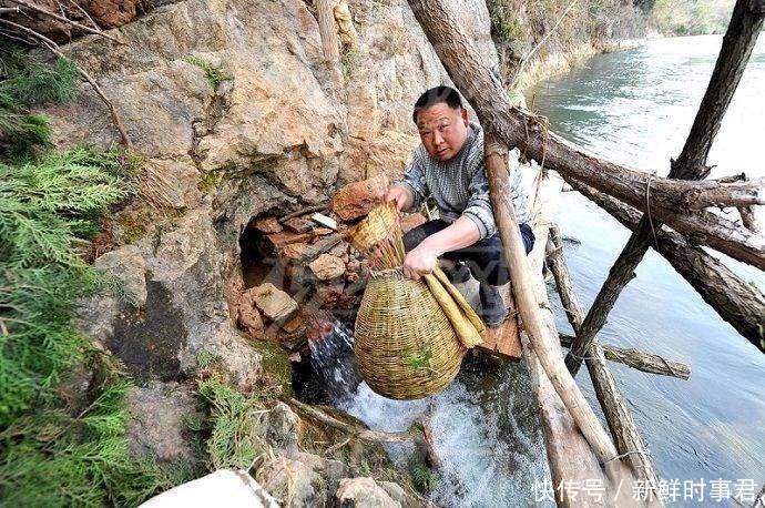 湖北省一个不起眼的小山洞, 每年流出几千斤鱼, 专家表示这种鱼不