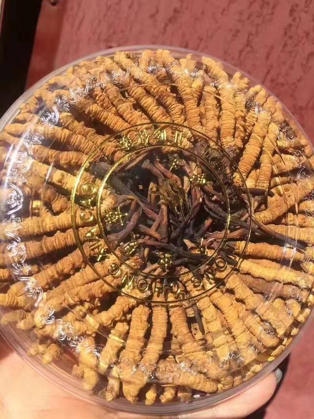肺癌晚期吃虫草有用吗?肺癌晚期吃冬虫夏草能活多久?