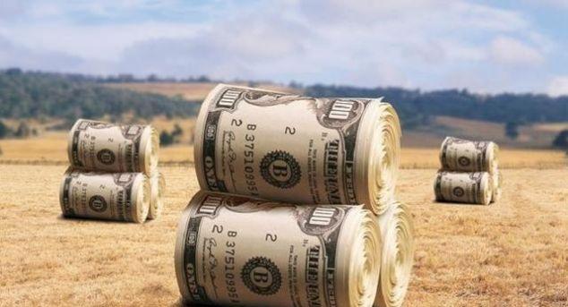 【景象】美国猪蹄鸡爪换美元景象或将结束,千个农场