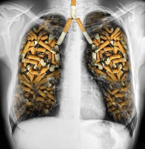 """尼古丁""""克星""""终于找到了, 每天吃几口, 帮你排出肺部毒素"""