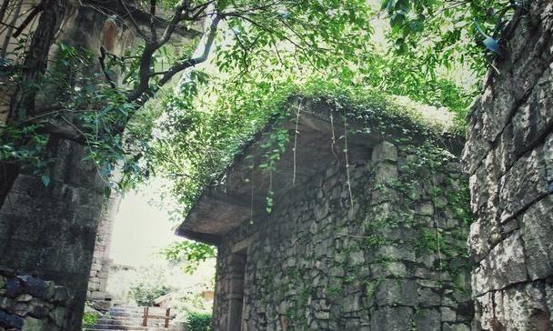 """贵州最""""神秘""""村寨,村中不见一砖一瓦,房子如何建造?"""