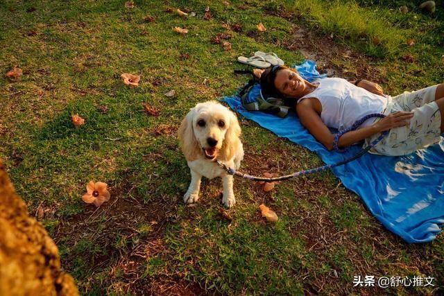 <b>划重点!养狗人一定要确保做好这5点,狗狗才会更健康</b>