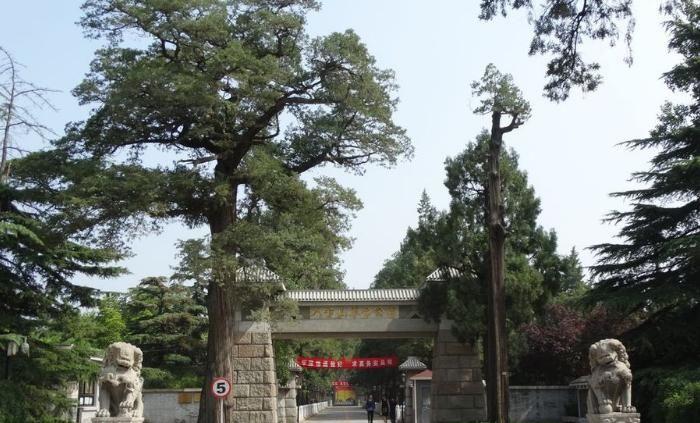 「设计者」中国八宝山公墓中,谁的墓被人祭扫最多?未曾想是红颜薄命的她