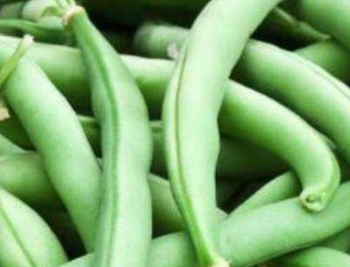 最常见的4种致癌蔬菜,长寿老人从来不吃,你不要再天天吃了!