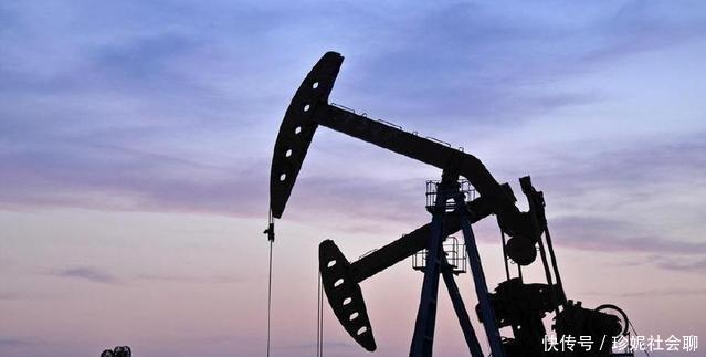 """【地下】石油""""磕头机""""磕一次头,到底能赚多少钱?"""