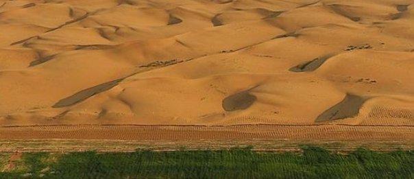 """我国发明的""""治沙""""神器,能将沙漠变绿洲,引得多国争相进口"""