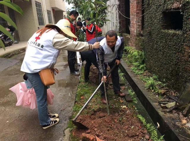 龙南县红十字会开展义务植树志愿服务活动