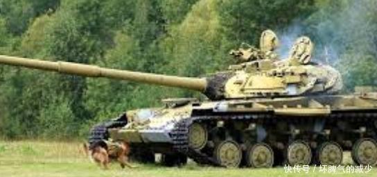 """敢死队:""""军犬敢死队"""",前苏联训练出的一批神秘猛犬,扭转战局第一功臣"""