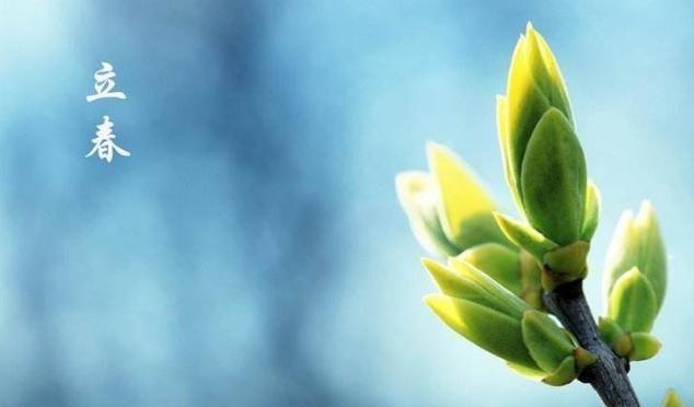 『营养』春季重在养肝,美味的猪肝粥清淡鲜香,补血明目,暖胃又营养