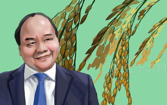 【澳大利亚】大米之后,越南蔬果对华出口也下跌44%!