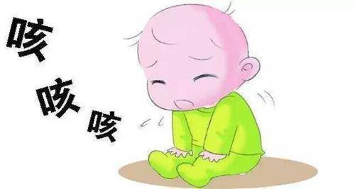 孩子咳嗽、肺热有痰,路边常见的这个草加桔梗煮汤,祛痰止咳清热