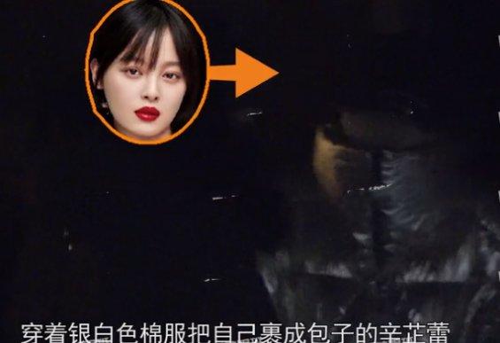翟天临复出演舞台剧,辛芷蕾被曝深夜返回男方住所 热点 热图8