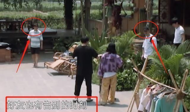 『举动』黄晓明离开蘑菇屋,黄磊没有出门远送,我却只关注他回屋后的举动