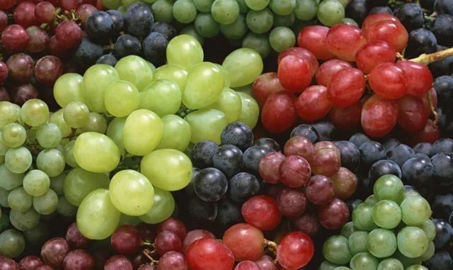 """一种葡萄一种""""药"""",秋季吃它刚刚好"""