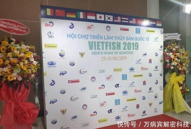 【海鲜】多图直击!越南最大海鲜展开幕