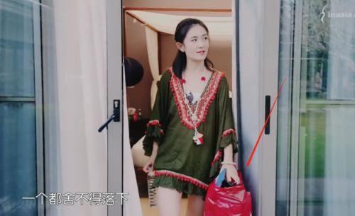 妻子们搬家,谢娜用包装袋,杨千嬅用双肩包,看霍思燕用的傻眼了!