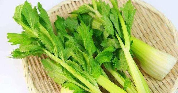 <b>9月养生,推荐常吃以下蔬菜,排毒养颜,降压减脂,减肥瘦身</b>