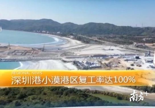 【港区】深汕合作区深圳港小漠港区复工率达100%