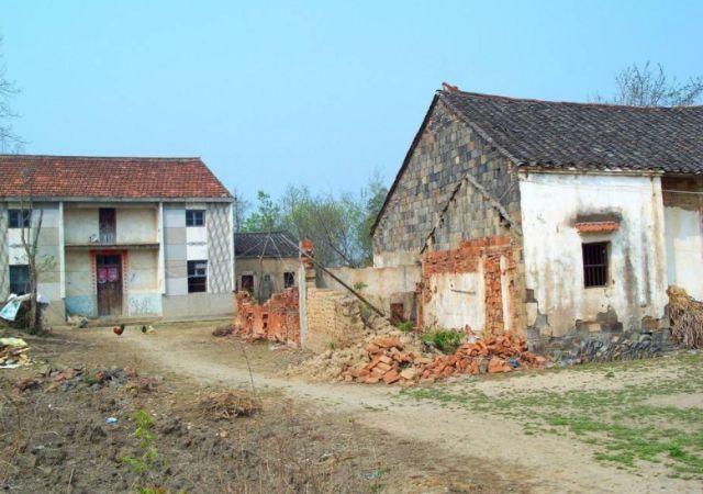 「植物」农村很普通的一种植物,被农村人当成是害草,却被城里
