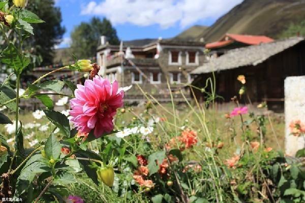 西藏的误解:不能乱洗澡,不能乱抽烟,还不能乱喝红景天?