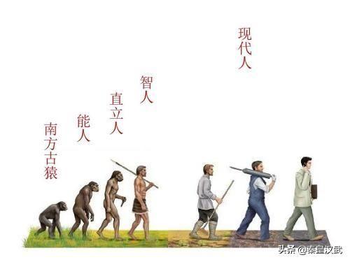 复旦教授:古中国人已灭绝,现代中国人源自非洲,老外犀利评论