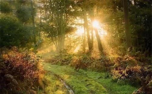 「时间」眼速比光速还快?太阳光到地球需要8分钟,人眼怎么能瞬间看到