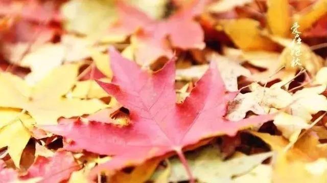 秋冬时节,糖尿病人群应注意的5个环节
