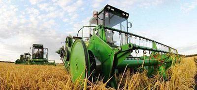 【玉米】水稻、小麦和玉米三大主粮,下半年行情怎样
