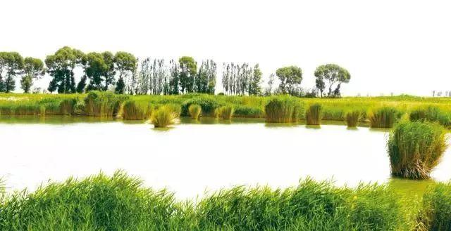 瓜州有个葫芦河,听说过吗?