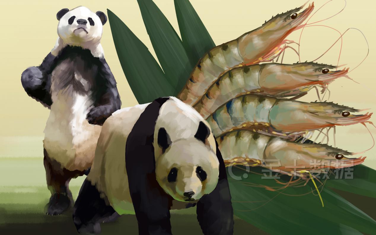 【虾仁】质量不达标!越南49吨虾仁被退运,15家越企