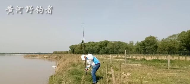 农村小哥海竿野钓黄河,4个小时钓上条鸽子鱼,相传是宫廷鱼