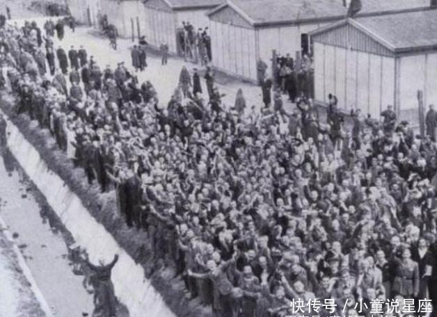 『达豪集中营』小女孩对纳粹军官说:求求你把我埋浅一点,我怕妈妈找不到我