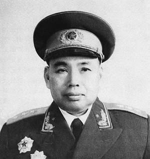 [高平方向]1979年对越反击战后,许世友离开指挥位置