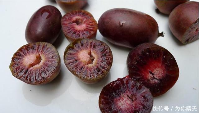 """冰箱■我国最甜的水果,比蜂蜜甜10倍!放""""冰箱""""冻不死,插土就活!"""